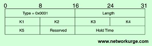 EIGRP Parameters TLV Format
