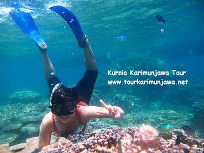 snorkeling di taka sendok karimunjawa