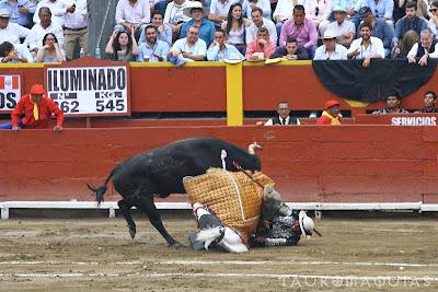 tombo caballo santiago reyes yaco II acho 2019 corrida toros picador torero caida toro