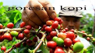poduktivitas kopi gayo tegolong rendah