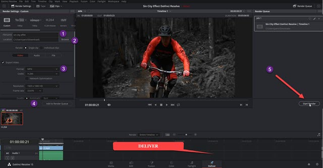 salvare-video-davinci-resolve