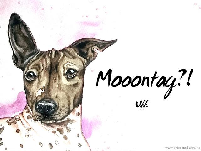 https://www.dropbox.com/s/t12zjpa73jut8q5/Mooontag_Portrait_Aquarell_Zeichnung_Facebook.jpg?dl=0