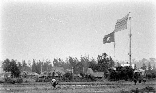 """LỊCH SỬ VIỆT NAM 1954-1975. AI MỚI LÀ """"NGỤY""""?"""