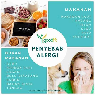 Penyeban Alergi