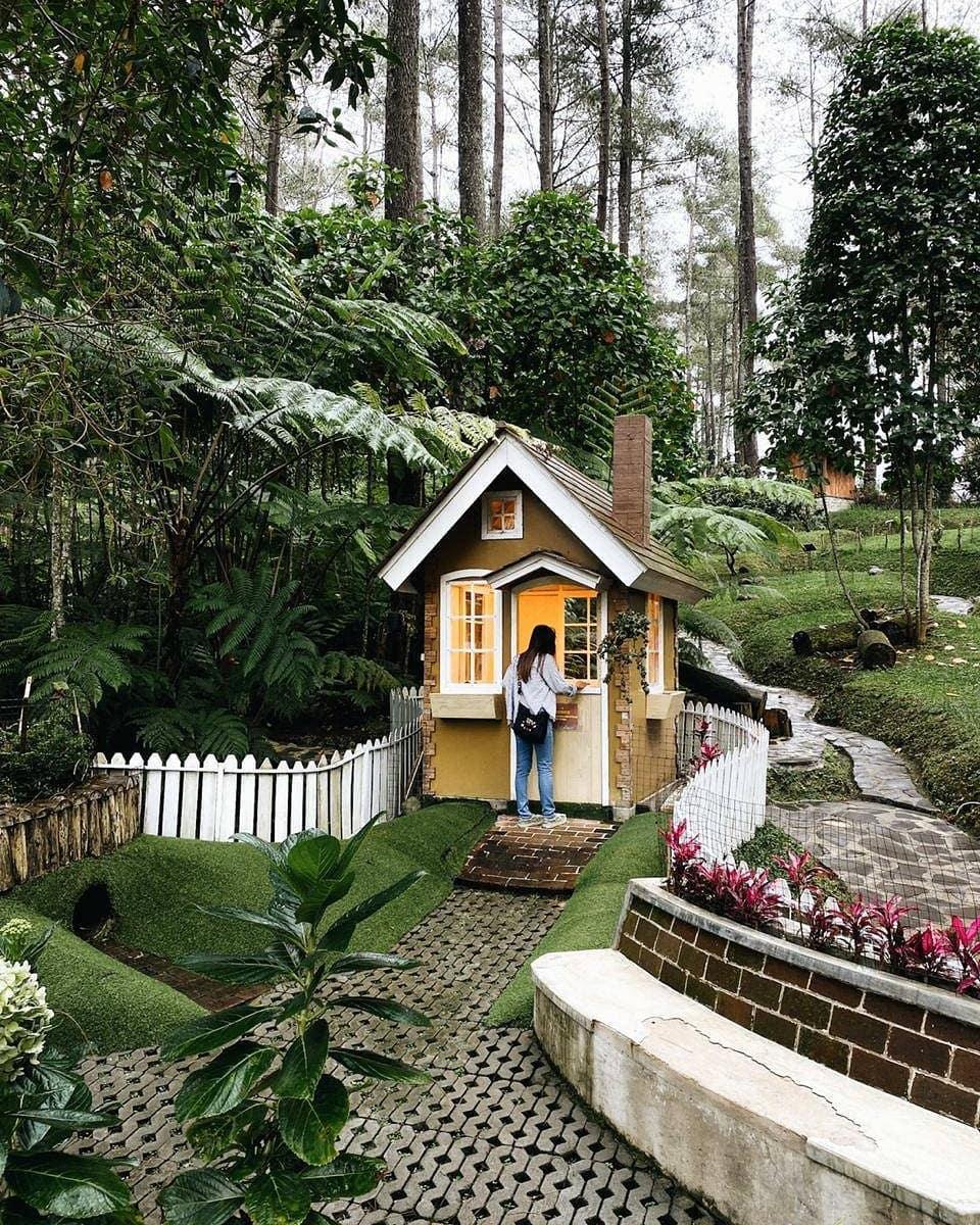 orchid forest cikole wisata bandung populer