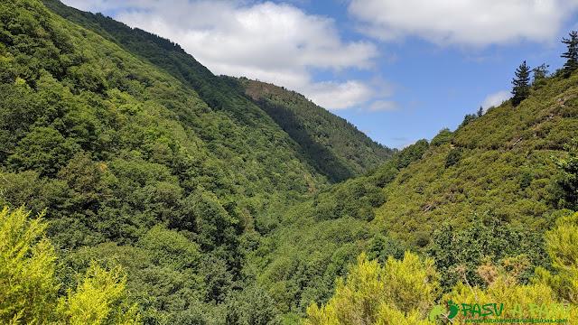 Valle del Turía hacia Taramundi