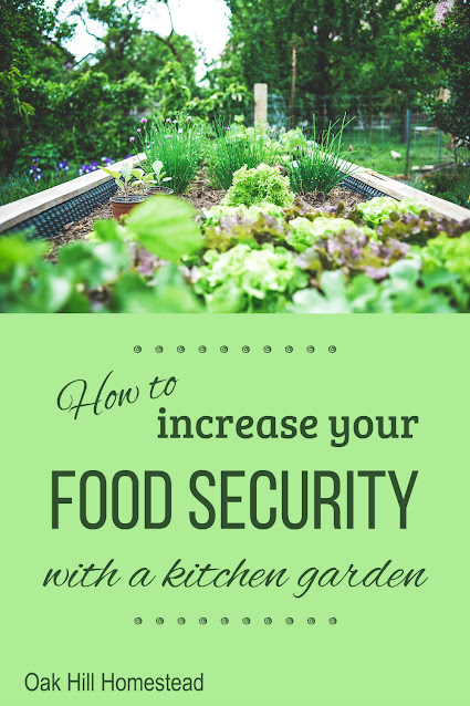 You can increase your family's food security by planting a kitchen garden. Find out how here.