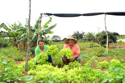 Resultado de imagem para dinheiro para agricultura familiar