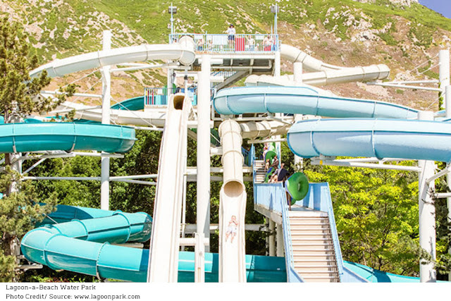 visitors climbing stairs to the tops of various water slides