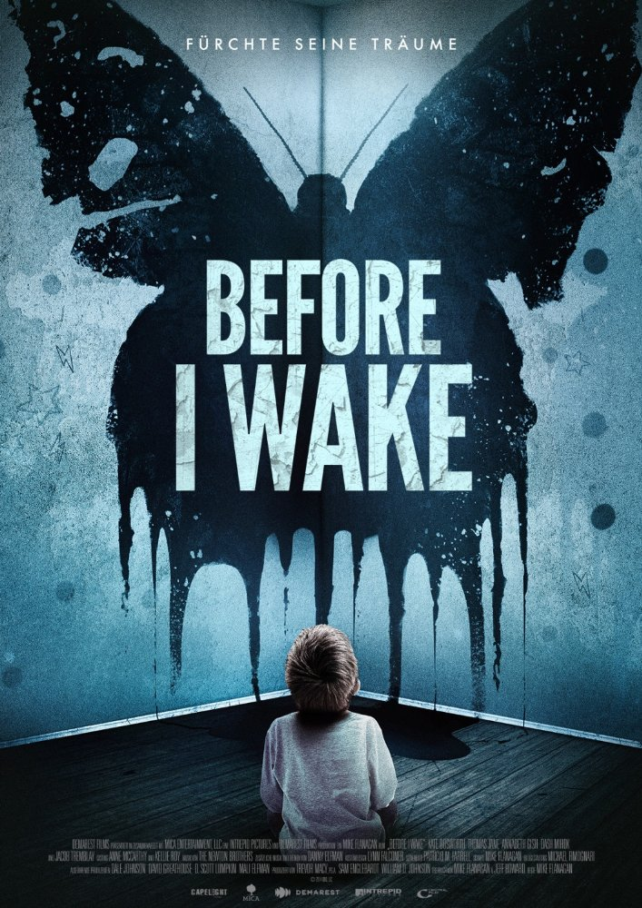 Before I Wake (2016) ORG Hindi Dual Audio 480p BluRay ESubs 350MB