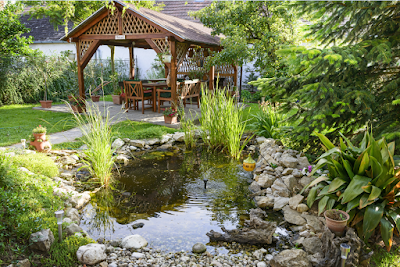 A Best Guide for Landscaping Your Home