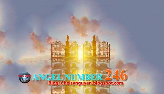 NUMBER 246 ANGEL   Ý NGHĨA SỐ 246