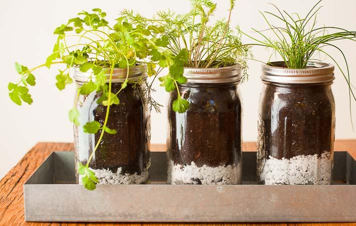 https://passthepistil.com/diy-mason-jar-herb-garden/