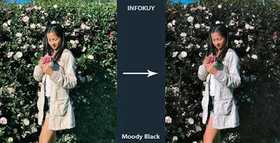 Tutorial Edit Foto Moody Dark di Lightroom Mobile