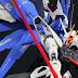 Painted Build: MG 1/100 Freedom Gundam Ver. 2.0