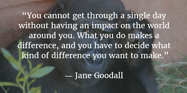 """You cannot get through a single day without having an impact on the world around you. What you do makes a difference, and you have to decide what kind of difference you want to make."" --Jane Goodall"