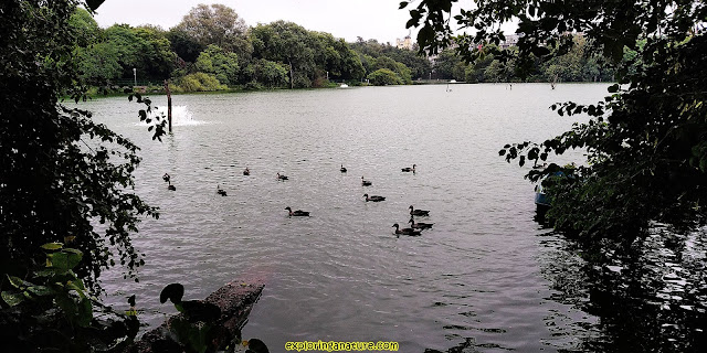 Hauz Khash Lake/ Hauz- I - Alai