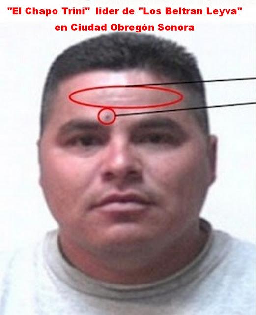 """Ejecutan en Jalisco a """"El Chapo Trini"""" Lider de """"Los Beltrán Leyva"""" y presunto tío de Alfredo Olivas"""