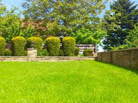 Lawn Activities for the Home Improvement Lover