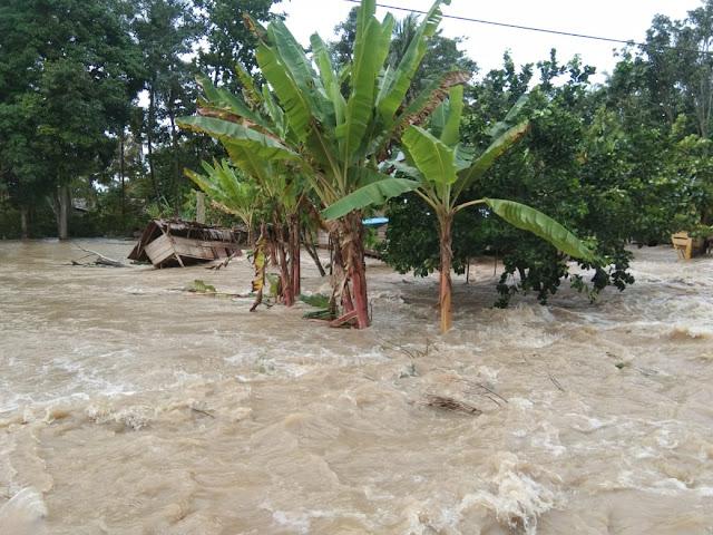 Banjir Rendam Sejumlah Wilayah Indonesia, Ratusan Keluarga Terdampak