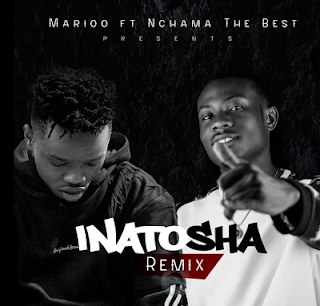 Download Audio Mp3 | Nchama the Best ft. Marioo - Inatosha Remix