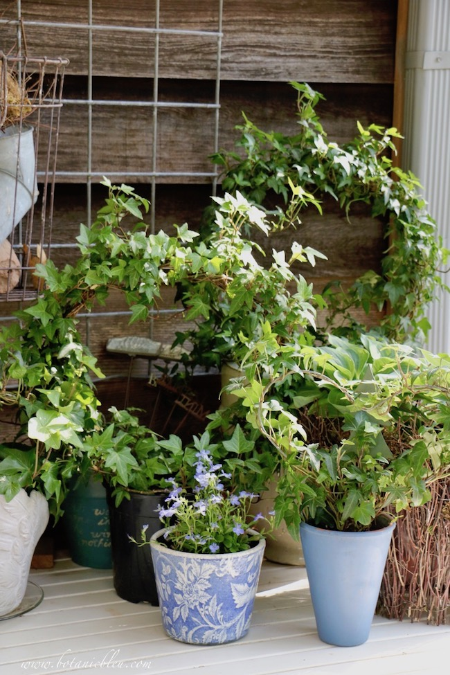 French Country Spring potting table with rejuvenated ivy wreaths