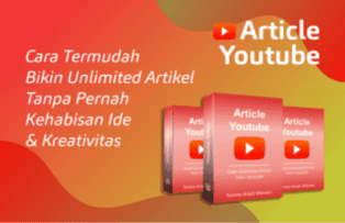 Article Youtube Wordpress Plugin
