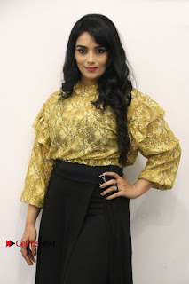 South Indian Actress Shweta Menon Stills at Inayathalam Audio Launch Stills  0014.jpg