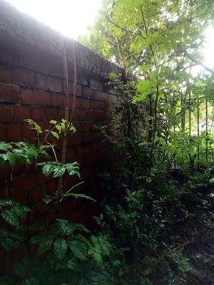 A663 Broadway near Chadderton ww2 air raid shelter derelictmanchester.com