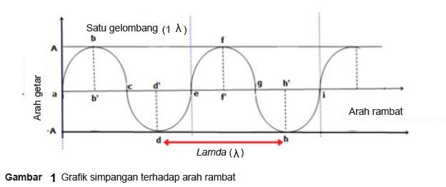 Gelombang Transversal dan Gelombang Longitudenal