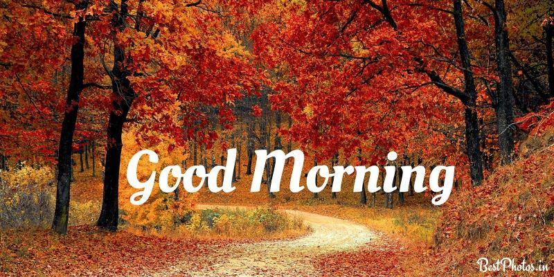 good morning natural beauty pic