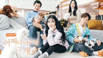 SNSD Tiffany Animal Farm Special