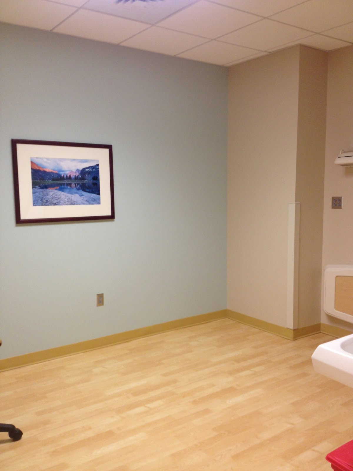 Patient Room Design: A Day In The Life: Amy Varner, Interior Design Student