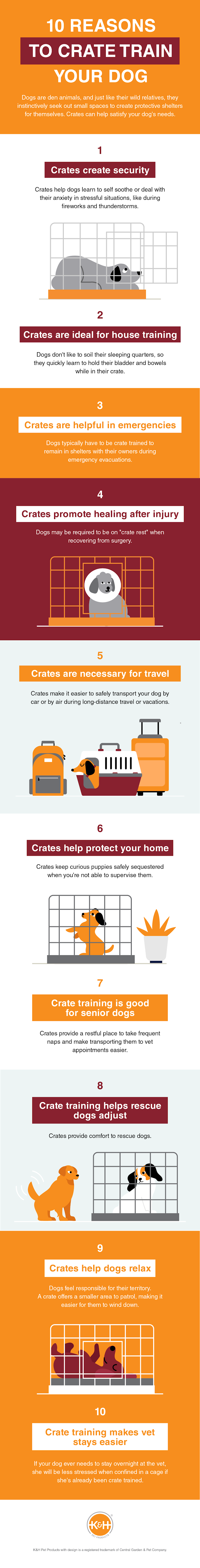 10 Reasons to Crate Train Your Dog #infographic #Pets & Animal #Dogs #Dog Training #Puppies
