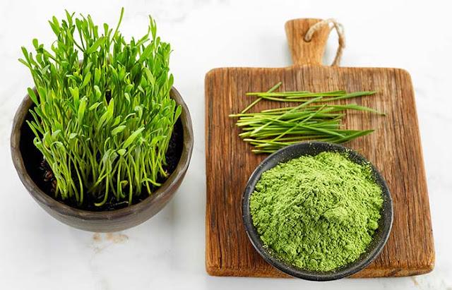 pulbere din iarba de grau verde