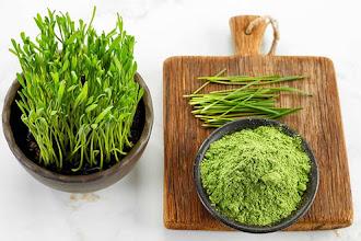 Pulberea din grau verde si beneficiile sale energizante