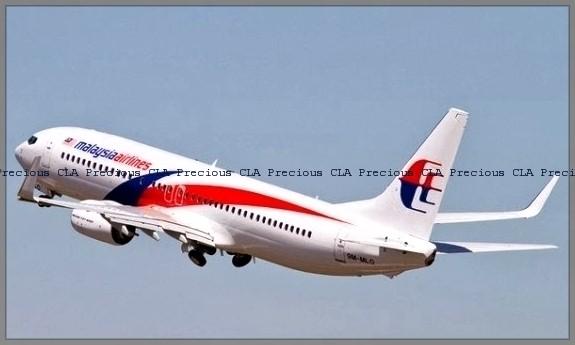 Agensi Penerbangan Pilihan ~ Malaysia Airlines