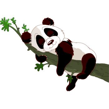 Napping panda