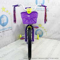 Sepeda Anak Everbest 3301 18 Inci
