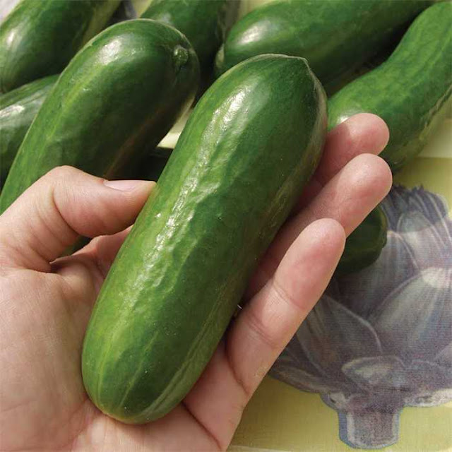 Thai Woman Brought to the Hospital After Cucumber Accidentally Got Stuck Inside Her Due to a 'Bad Fall'