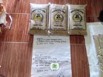 Benih Padi Pesanan    KAMARUZZAMAN Aceh Timur, Aceh.    (Sebelum di Packing).