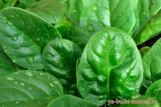 лечение заблеваний натуральными продуктами
