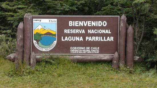 reserva nacional en chile