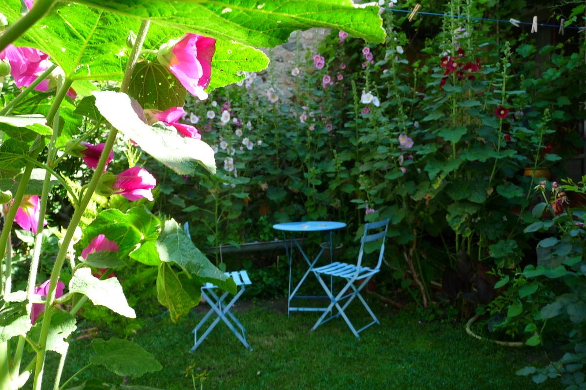 Les balades de lison le jardin de mon grand p re for Jardin des vins 2016 sion