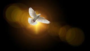 pregação ser cheio do Espírito Santo