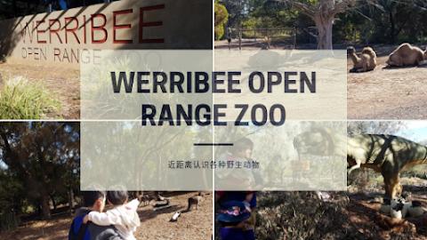 【墨尔本景点】墨尔本亲子游@Day4 Part 1 华勒比野生动物园 Werribee Open Range Zoo | 带孩子们一起近距离认识各种野生动物