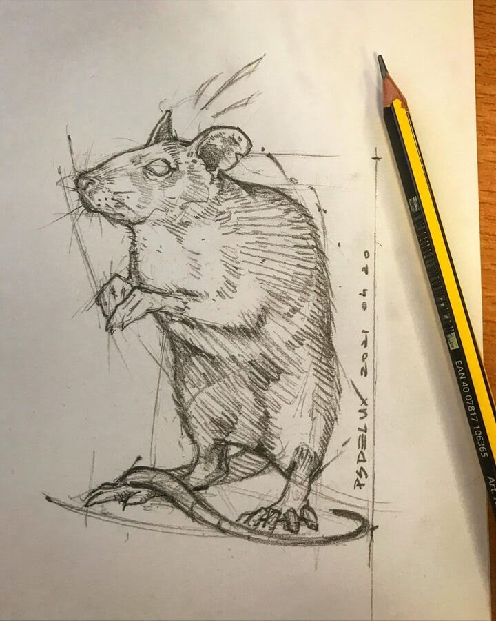 09-Cute-Rat-Psdelux-www-designstack-co