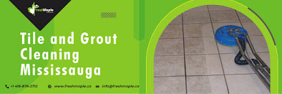 Tile%2Band%2BGrout%2BCleaning%2BMississauga%2B2.jpg