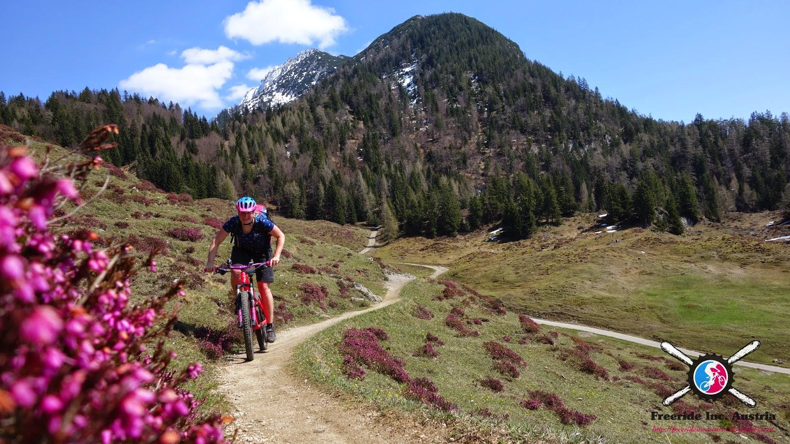 Mountainbike Tour auf die Walleralm