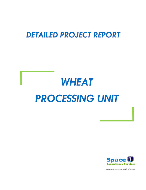 Project Report on Wheat Processing Unit